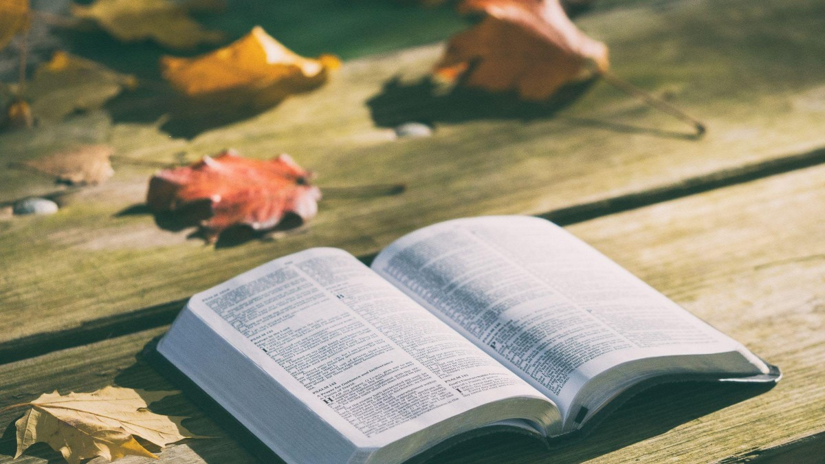 Commentaries on the Christ and True Christianity