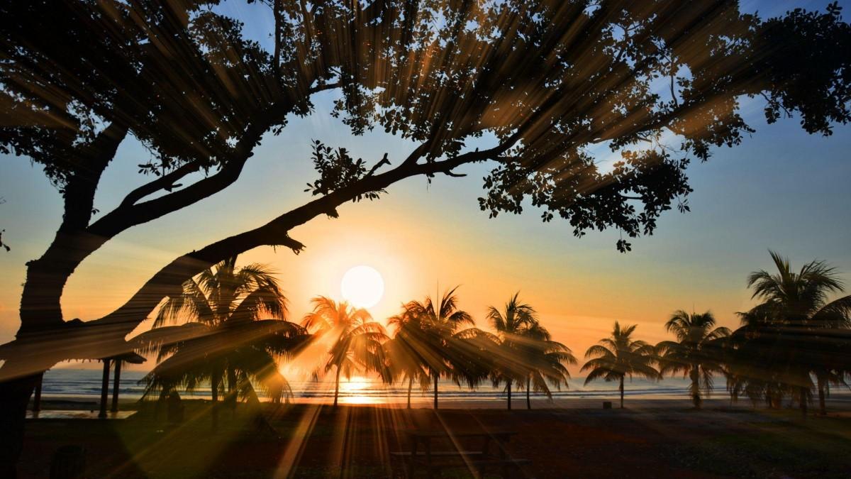 Twelve Secrets to Living Stress Free