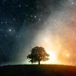 Awaken the Power of Your Supernatural Self