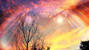 The Divine Rising