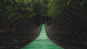 The Bridge of Being