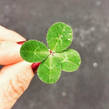 How to Have Good Luck Every Day of Your Life