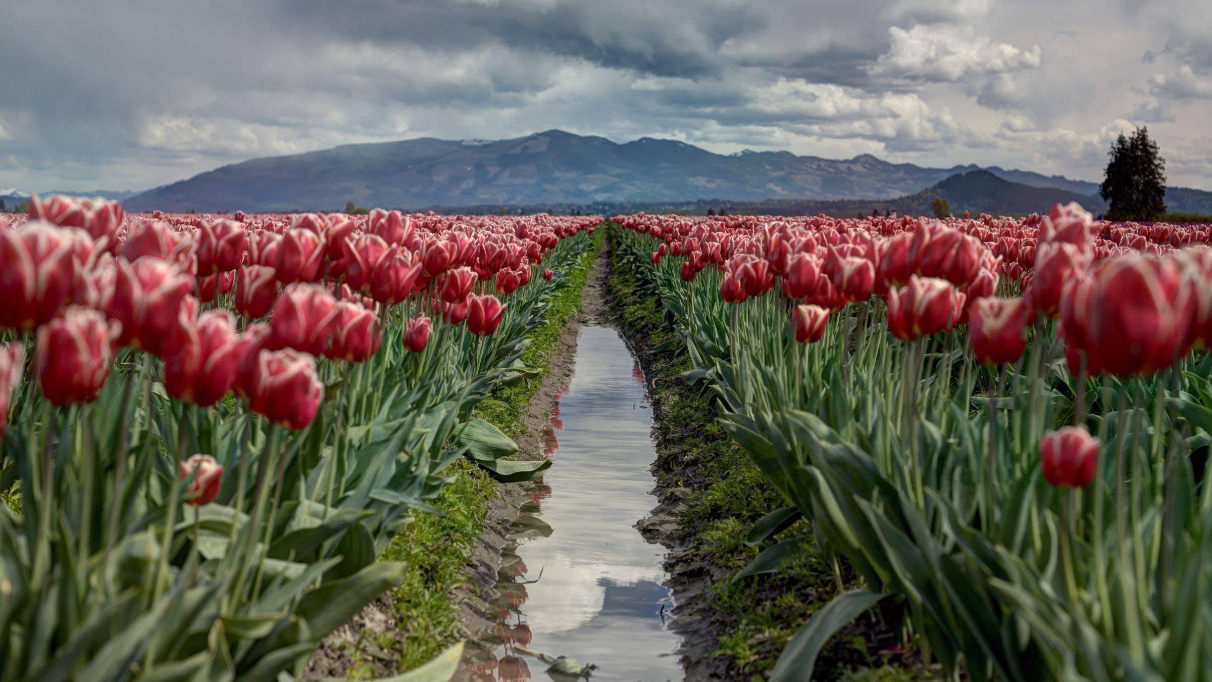 The Lost Secret of Making a Fresh Start in Life