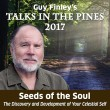 Talks in the Pines 2017: Seeds of the Soul